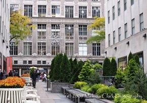 Planters at Rockefeller Center