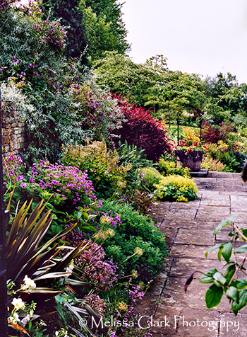 Brook Cottage garden