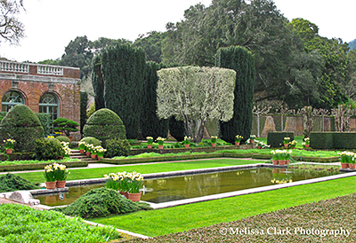 A winter road trip part 3 filoli center garden shoots for Filoli garden pool