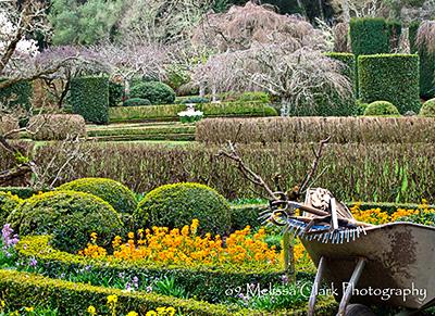 Filoli Center gardens