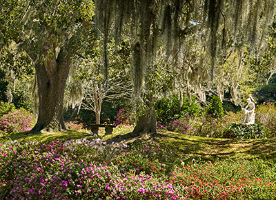 Middleton Place, Charleston