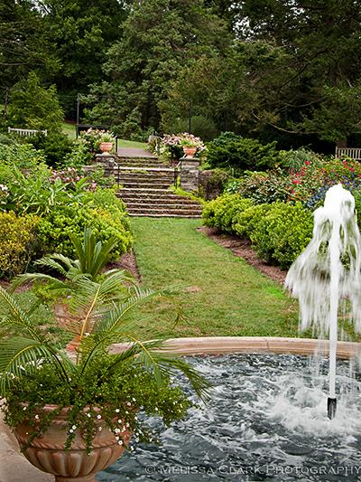 Morris Arboretum, Rose Garden