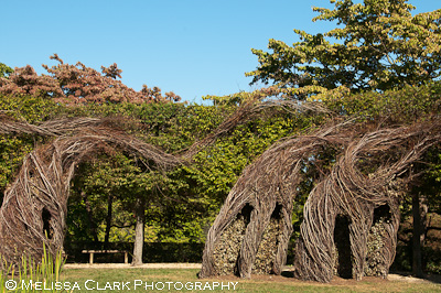 Dumbarton Oaks, Ellipse, Patrick Dougherty