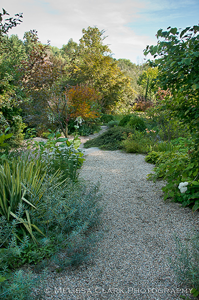 Hollister House Garden, Garden Conservancy