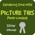 Gardening Gone Wild, silver award, Picture This