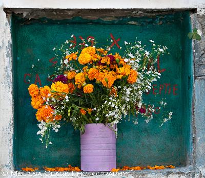 Day of the Dead, San Miguel de Allende, flower offerings
