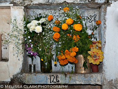 San Miguel de Allende, Day of the Dead, cemetery, flower offerings