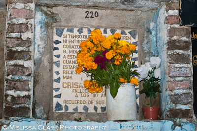 San Miguel de Allende, Day of the Dead, flower offerings, cemetery