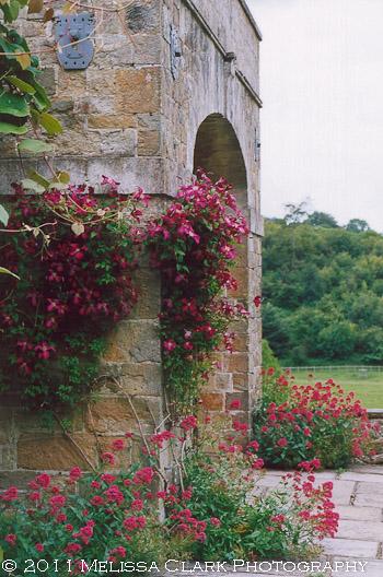 Chartwell Garden, Winston Churchill