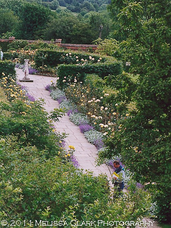Chartwell Garden, Golden Rose Walk, Winston Churchill