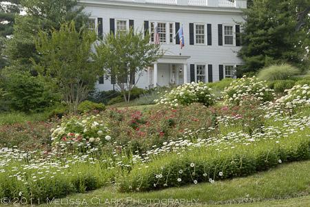 American University Arboretum, President's Garden