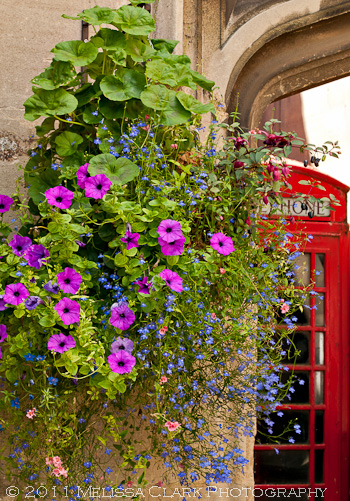 Magdalen College gardens, summer containers, hanging baskets