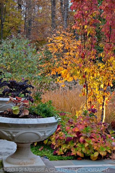 garden lighting, fall gardens, garden design