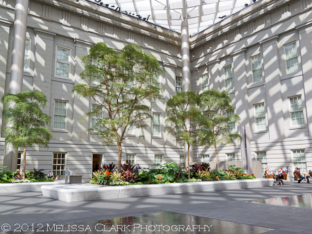 Kogod Courtyard, Smithsonian Museum of American Art