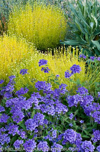Elizabeth Gamble Garden, Palo Alto gardens