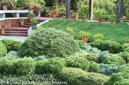 National Arboretum, Knot Garden