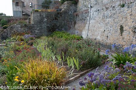 Garden Conservancy, Alcatraz Gardens, Golden Gate National Parks Conservancy