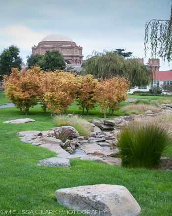 The flowing water feature sits in the center of this part of the campus. The large boulders help balance the presence of the Fine Arts Palace seen in the background.