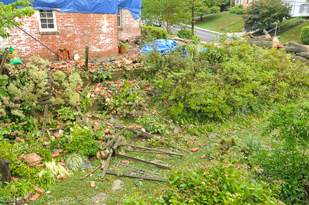 Arbor debris surrounded by bricks after the tree canopy was removed from the house next door.