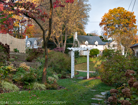 A new white arbor has found a home where the old one was. Now all that remains is to decide what to plant to adorn it.