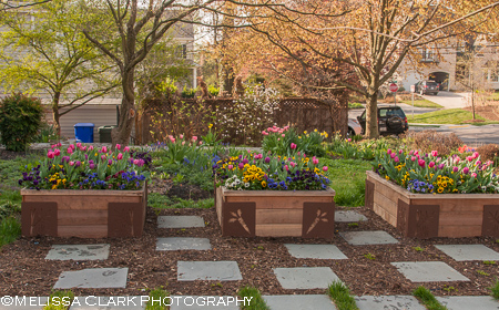M-Brace, Landscape Projects Inc., raised beds