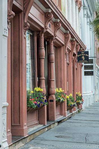 Charleston gardens, window boxes