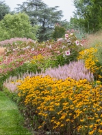 American University arboretum, summer perennials, gardens