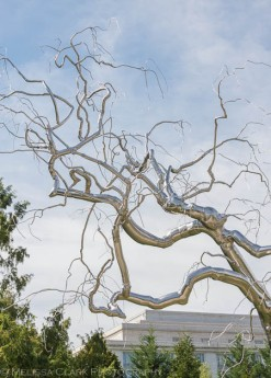 Roxy Paine, National Sculpture Garden