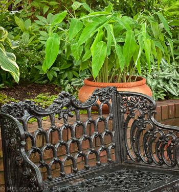 ornamental ironwork, garden benches, Ripley Garden, Smithsonian Museum