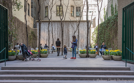 Paley Park, New York City, pocket parks