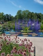 """The purple tubes in the """"Monet's Garden"""" area of the DBG."""