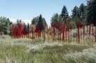 These reed-like structures looked perfectly at home in the wild, grassy area in which they were placed.