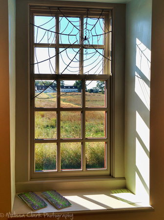 October at longwood part 2 the meadow garden garden for Jonathan alderson landscape architects
