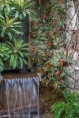 Tropical wall plants near the orchids.