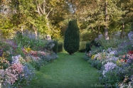 The Herbaceous Border in late afternoon sun.