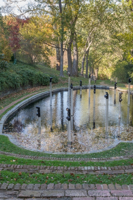 Autumn vistas at dumbarton oaks garden shoots for Garden oaks pool