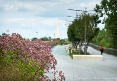 The walkway over Long Bridge Park offers views of the National Monument.