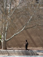 """Compose and wait,"" on the UNM campus at Albuquerque."