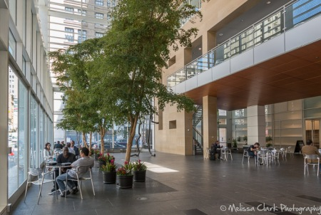 A privately-owned but publicly accessible space in the form of an atrium at 101 Second Street. There is a coffee bar under the mezzanine area.