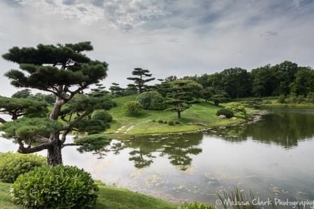 Chicago Botanic Garden, Japanese Garden
