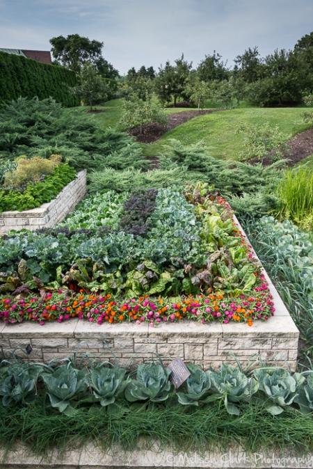 Chicago Botanic Garden, Regenstein Fruit and Vegetable Garden