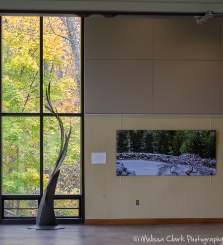 A view from the main, large room in the Center out to the surrounding woodlands.