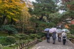 Even in the rain, garden-viewing is a popular pastime in Kanzawa.