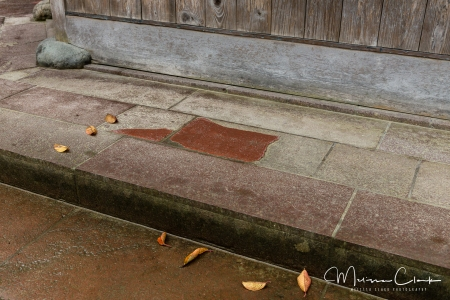 Outside the entrance to the garden, paving details show the Japanese appreciation for beauty in the simplest things.